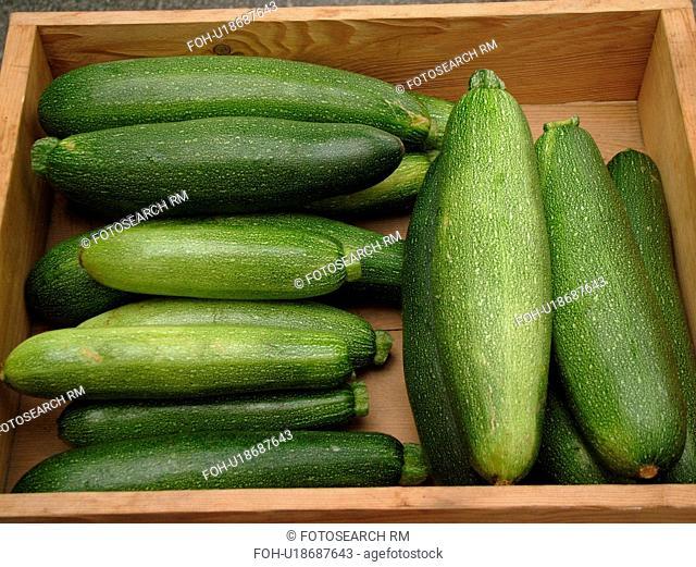Montpelier, VT, Vermont, Farmer's Market, Zucchini