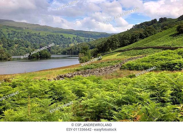 Rydal Water, Cumbria