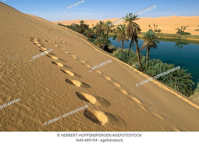 Oasis, Libya