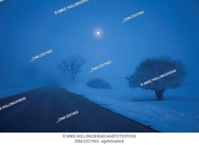 Freezing fog under a full moon at Desoto Bend National Wildlife Refuge