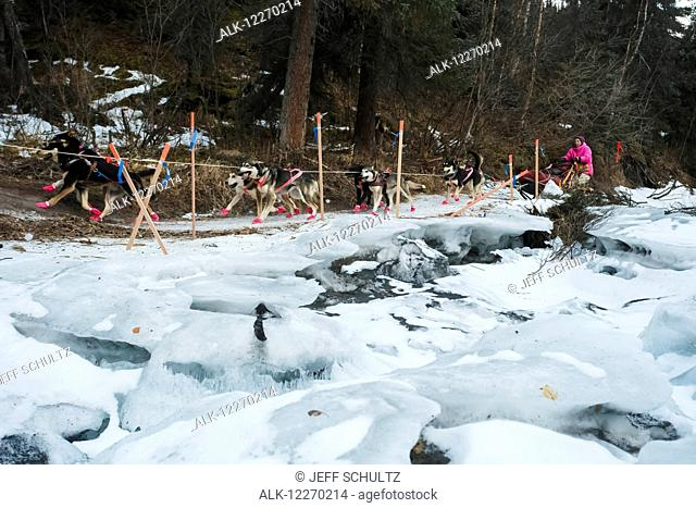 DeeDee Jonrowe runs on an ice shelf in the Dalzell Gorge during the 2014 Iditarod