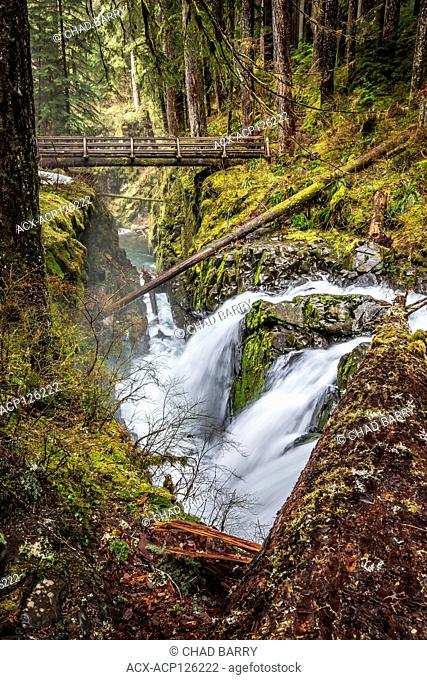Sol Duc Falls, Sol Duc Rainforest, Olympic National Park, Washington, United States