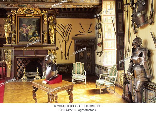 The Arms Room, Château de Cheverny. Loir-et-Cher, France