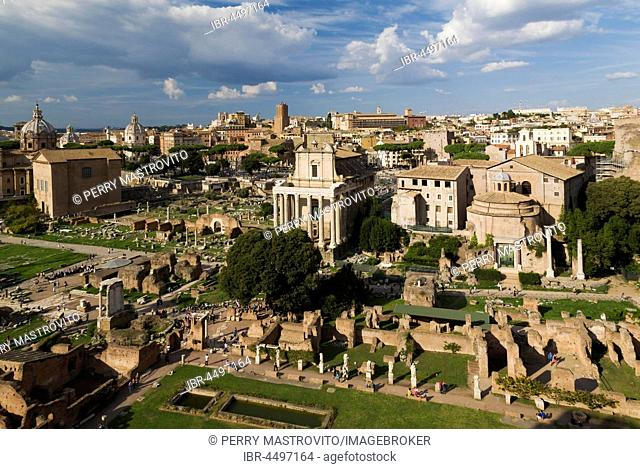 Top view of Roman Forum ruins with Curia, Basilica Aemilia, Temple of Antoninus and Faustina, So-called temple of Romulus, Rome, Italy