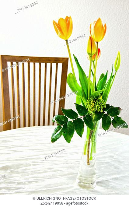 Still life of tulips in a glass vase and chair
