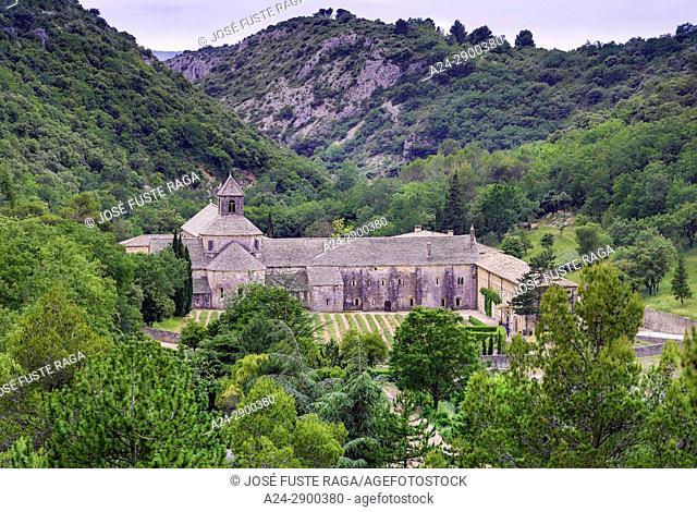 France, Provence region, Gordes City, Senanque Abbey,