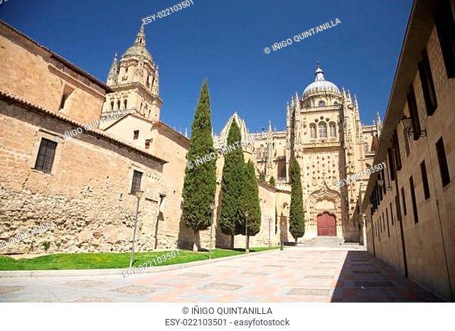 street next to Salamanca cathedral