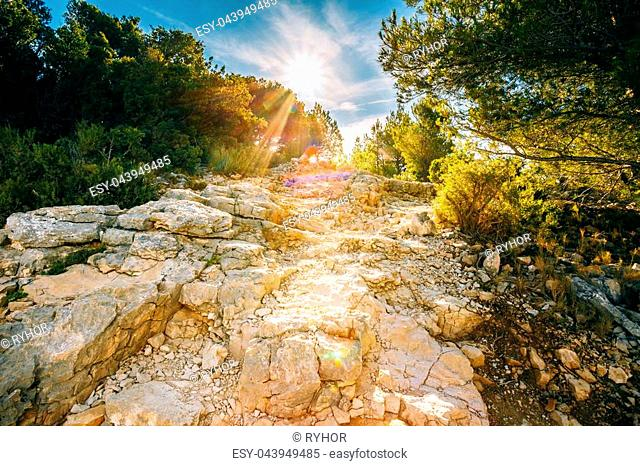 Sunrise over beautiful nature of Calanques on the azure coast of France. High bright cliffs in sunlight under blue sunny sky