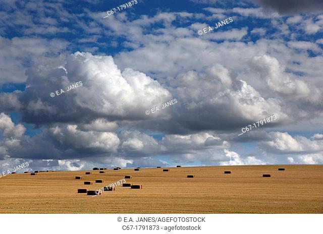 Stubble and Bales after Harvest Norfolk August