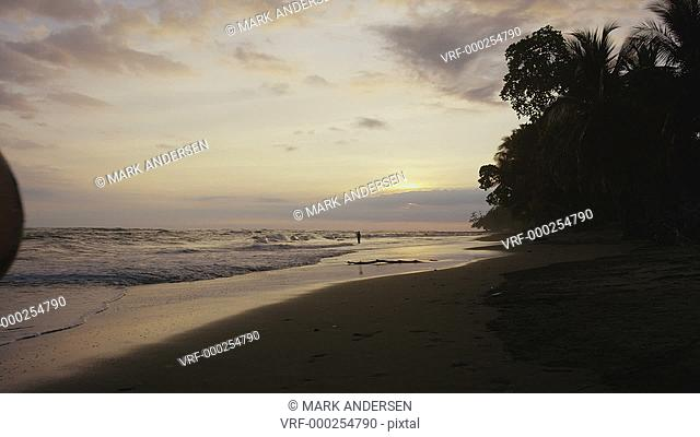 Wide shot of couple carrying surfboards on beach at sunset / Esterillos, Puntarenas, Costa Rica