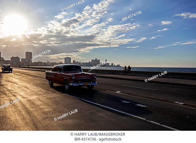 Street scenery, vintage cars driving on the Malecon, evening mood, backlight, Havana, Cuba