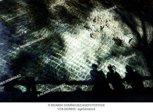 People shadows on the water of a lake. San Vicente Park, Lliria, Spain
