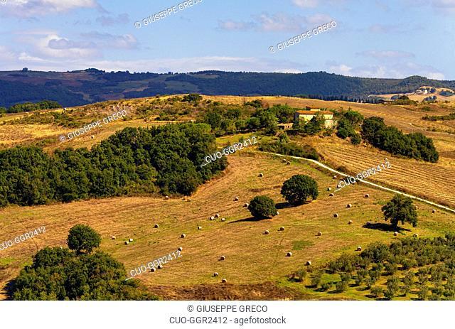 Montepulciano valley, Siena, Tuscany, Italy, Europe
