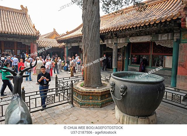 Imperial Palace. Forbidden City. Beijing. China