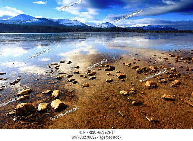 Loch Morlich at sunrise, United Kingdom, Scotland, Cairngorms National Park