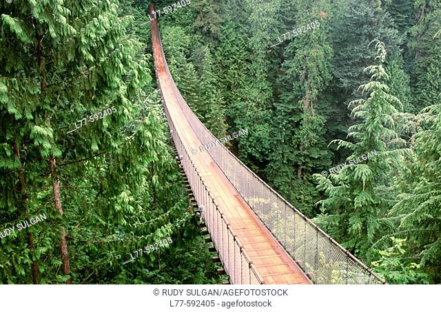 Capilano suspension bridge. Vancouver. British Columbia. Canada