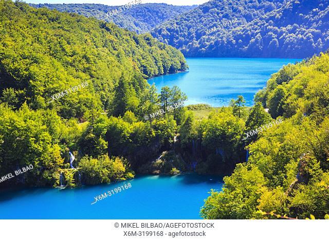 Lower lakes canyon. Plitvice Lakes National Park. Croatia, Europe