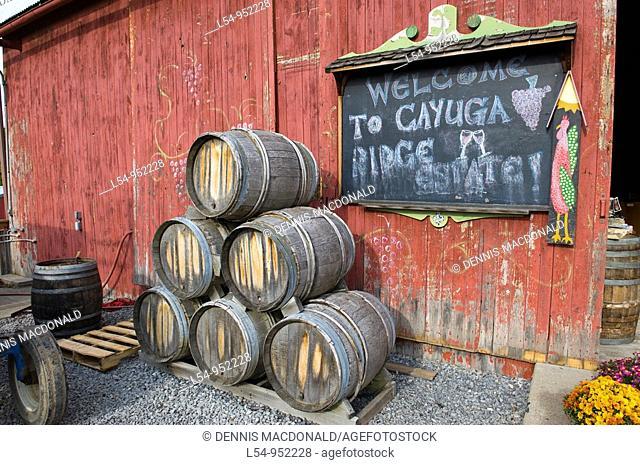 Wine Casks Vineyards Finger Lakes Region New York Cayuga Lake