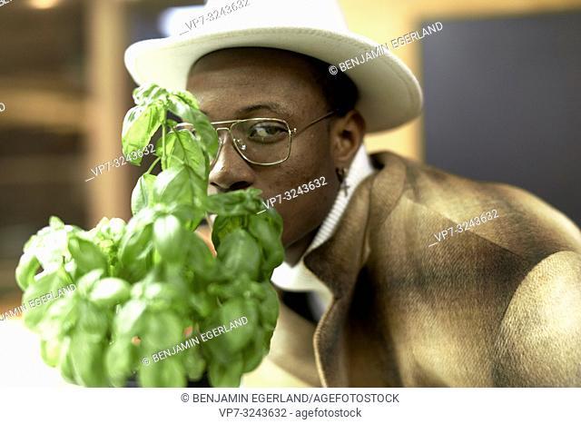 stylish blogger man behind fresh basil plant indoors, in Munich, Germany