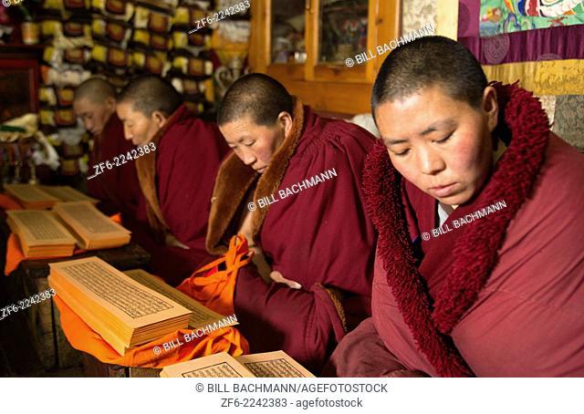 Nepal Himalayas Buddhist nuns reading praying at the Kharigandentenphelling Monastery in the village of Thamo Solukhumbu Mt Everest remote religion Buddhst...
