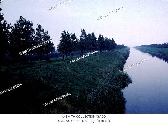 Tree lined canal stretching into the distance, on an overcast day, Holland, 1961