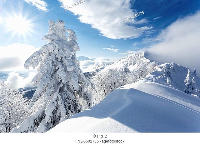 Mountainscape in winter above the Salzach Valley, Salzburg State, Austria