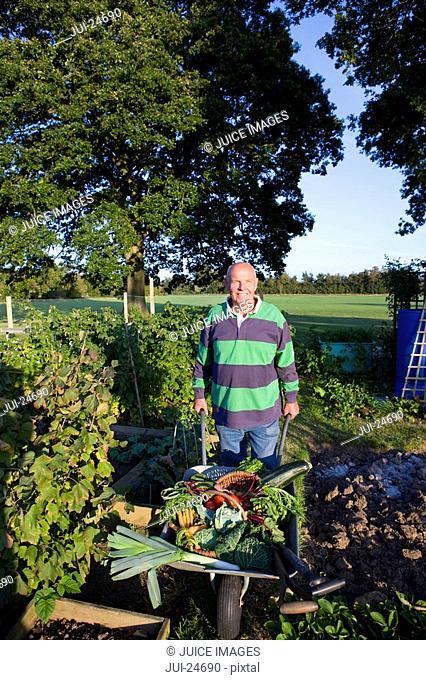 Man picking vegetables in garden