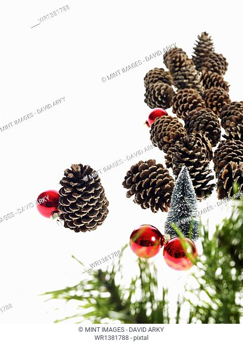 Still life. Green leaf foliage and decorations. A pine tree branch with green needles. Christmas decorations. Pine cones and small red shiny ornaments