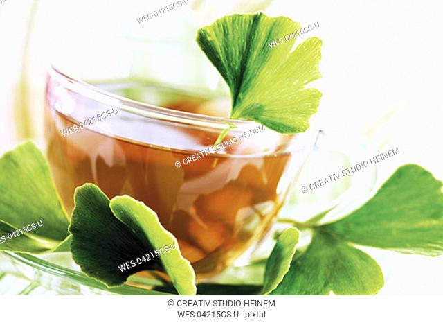 Cup of ginko tea with ginko leaves