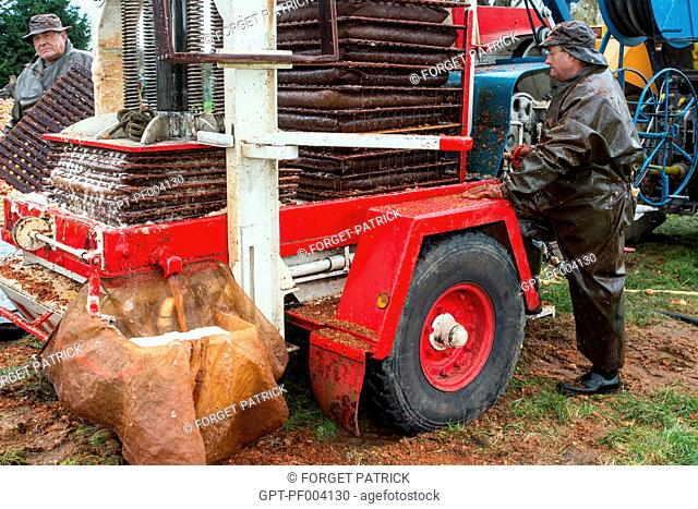 THE CRUSHER'S HYDRAULIC PRESS FOR CRUSHING APPLES TO MAKE FARM CIDER, CLAUDE COURBE'S FARM, RUGLES (27), FRANCE
