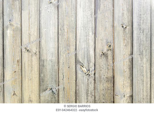 Wood background, detail of old wood, texture