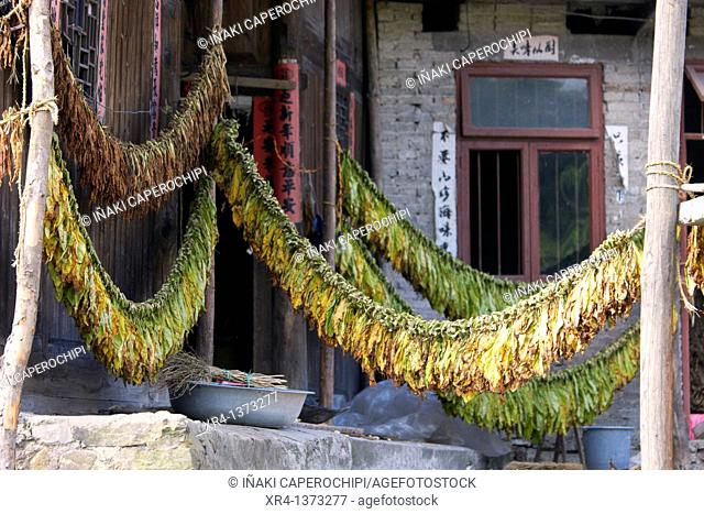Sheets air dry snuff, Quingyan, Quingyan ancient town, Guizhou, China