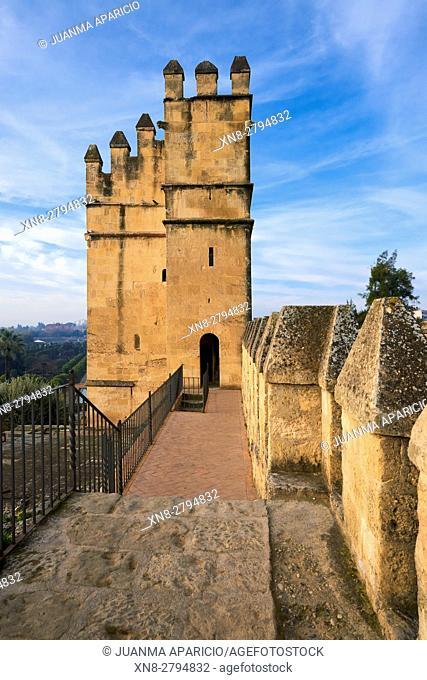 Alcazar of Catholic Kings, Córdoba, Andalusia, Spain, Europe