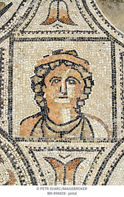 Detail from the Labours of Hercules floor mosaic in the ruined Roman city of Volubilis, Morocco, Africa