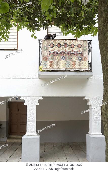 Street of Santo Domigo de la Calzada, La Rioja, Spain. Balcony with cat