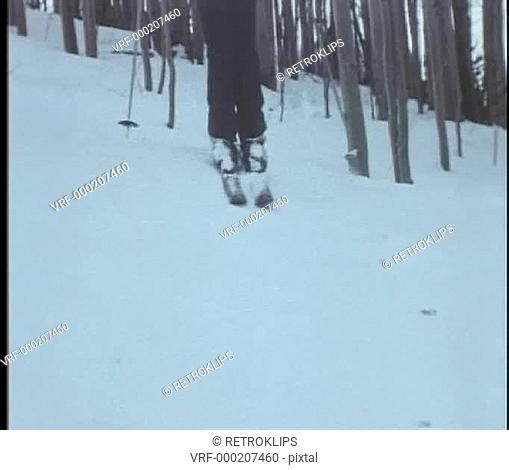 Low angle view of skier coming down wooded slope