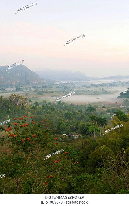 Valle de Viñales, Vinales valley at dawn, Unesco World Heritage Site, Mogotes, Pinar del Rio Province, Cuba