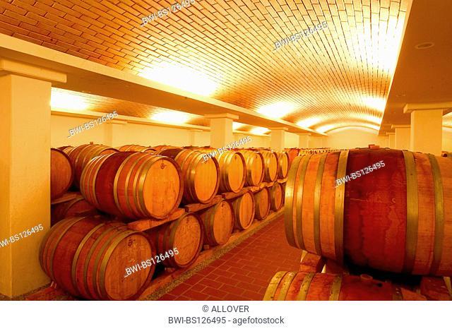 Austria winery Moser barrique wine cellar