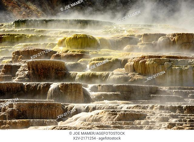Mammoth Hot Springs is a large complex of hot springs on a hill of travertine in Yellowstone National Park adjacent to Fort Yellowstone and the Mammoth Hot...