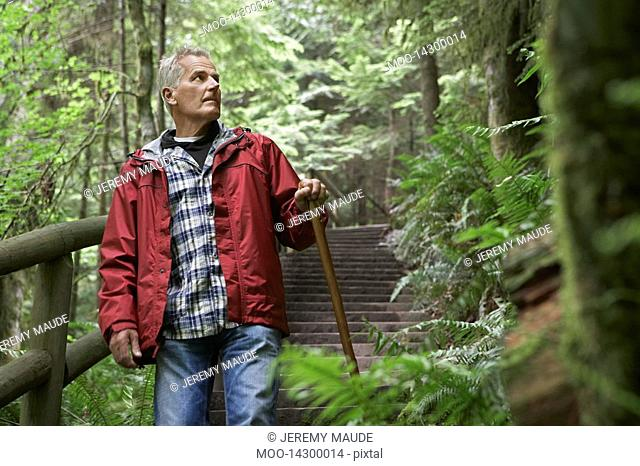 Senior man on trail in forest looking away