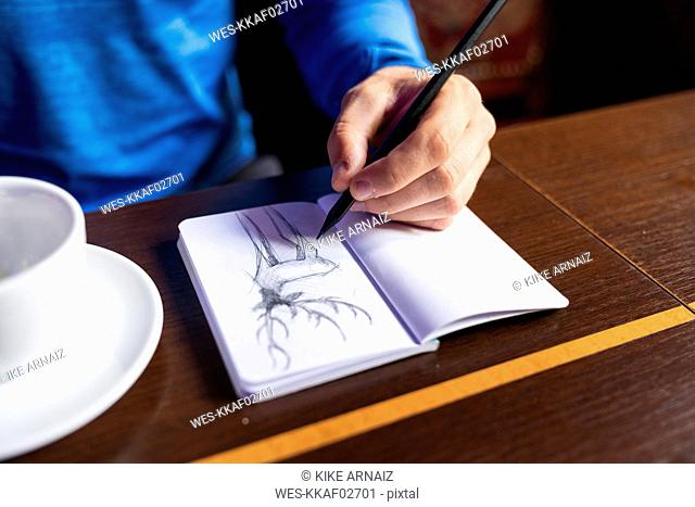 Close-up of man drawing deer into sketchbook at table