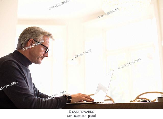 Mature male freelancer working at laptop at home