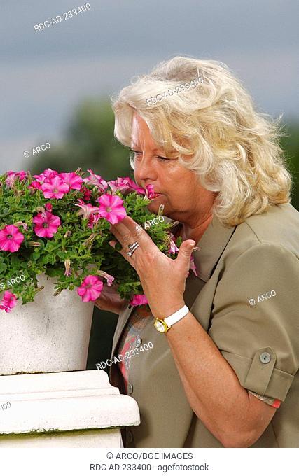 Woman smelling at petunia, Petunia hybride, flavour