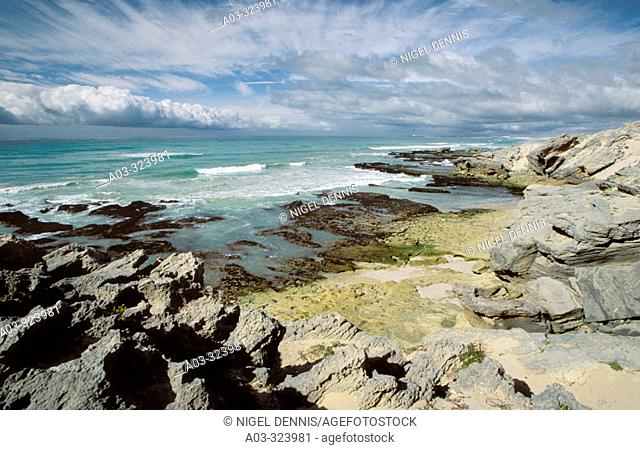 De Hoop Nature Reserve, seascape with clouds, prime whale watching area, Western Cape, South Africa