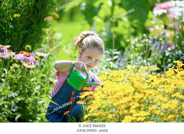 garden, gardener, gardening