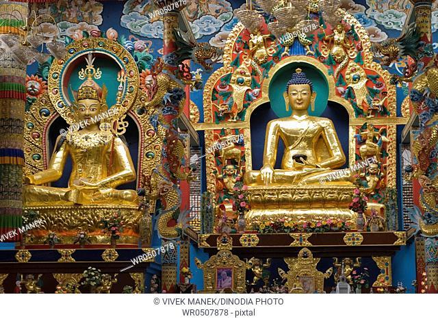 Golden Buddha statues in Namdroling monastery Palyul Nyingmapa Buddhist Centre Byalakuppe , Mysore District , Karnataka , India