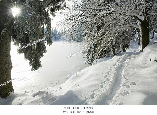 Germany, Black forest, Mummelsee, Winter scenery