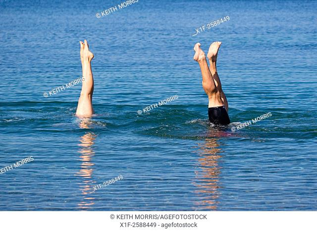 Aberystwyth Wales UK, Tuesday September 08 2015. . UK Weather: People enjoy the early autumn sunshine swimming and doing handstands in the flat calm sea at...