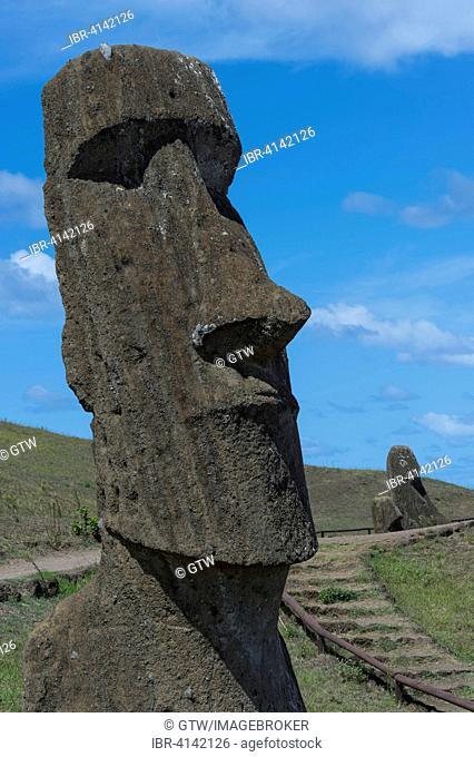 Moai in Rano Raraku, Unesco World Heritage, Rapa Nui National Park, Easter Island, Chile