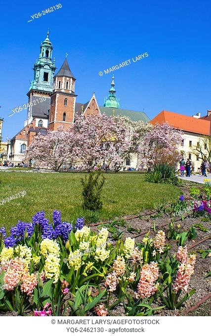 Spring garden at Krakow's Royal Wawel Castle with Wawel Cathedral in the background, Krakow, Poland, Europe